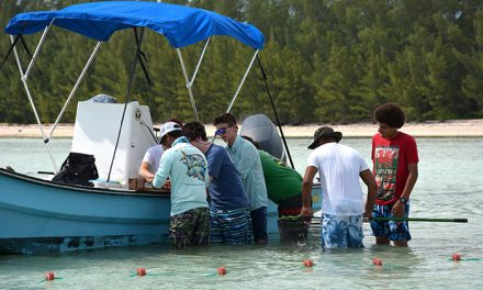Bahamian Students Receive Hands On Lesson in Bonefish Conservation