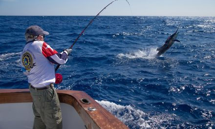 2016 «Jake Jordan Invitational, Sailfish Fly Challenge», in Guatemala