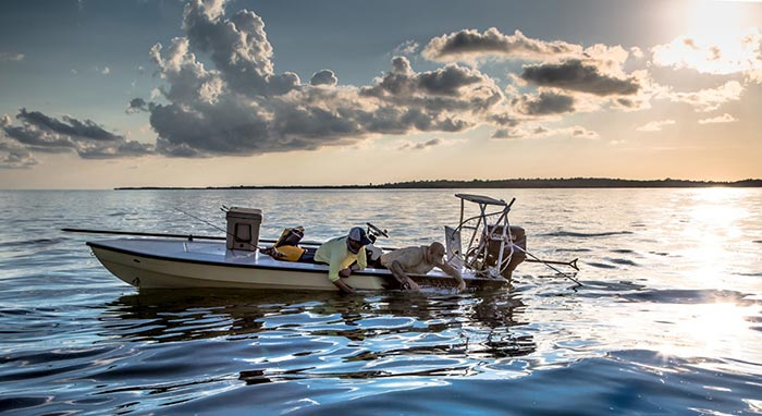45 Pound Tarpon Travels Over 400 Miles in a Month!