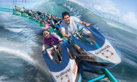 SeaWorld San Antonio empieza el 2017 con un año lleno de diversión