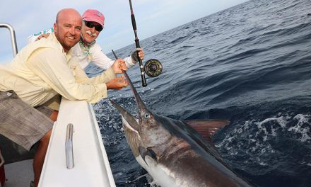 The Quest for the Capture of a Black Marlin on Fly Tackle