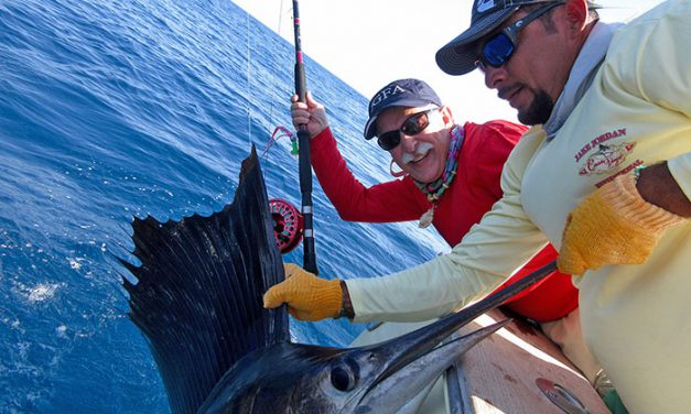 Ninth Annual Sailfish on Fly Tournament  A Great Success!