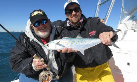 STRIP, POP, SLAM Spanish mackerel for the attention-deficit