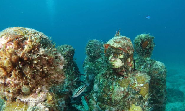 Florida Artificial Reefs
