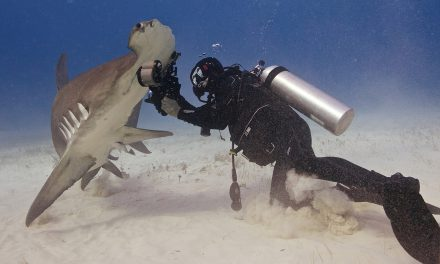 La pasión de un fotógrafo en las profundidades marinas