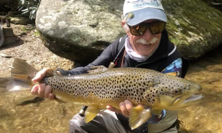 Fly Fishing for Trout in North Carolina